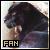 Black jaguars fan