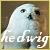 Hedwig fan