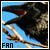 Crows fan